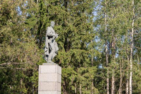 Памятник советскому воину-победителю