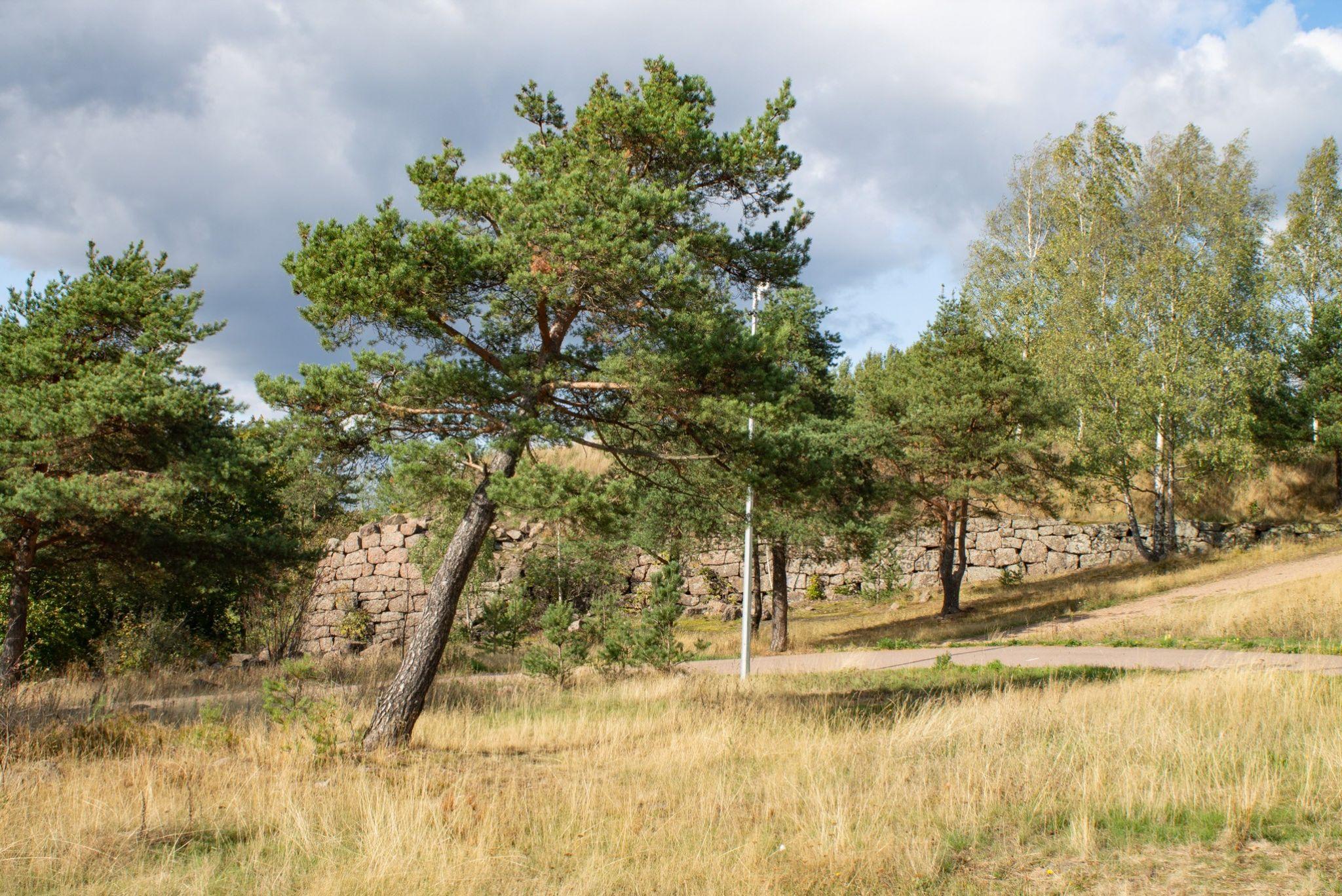 Восточно-Выборгские укрепления